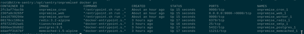 Sentry: running self-hosted errors tracking system on an AWS EC2